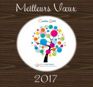 Voeux CGC 2017