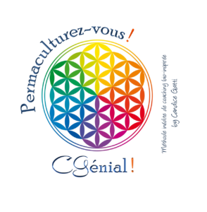 logo cgméthode2017